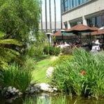 patio lago